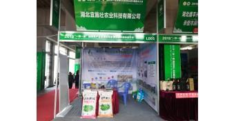 """宜施壮亮相2019""""一带一路""""国际茶产业发展论坛"""